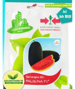 benih semangka palguna f1